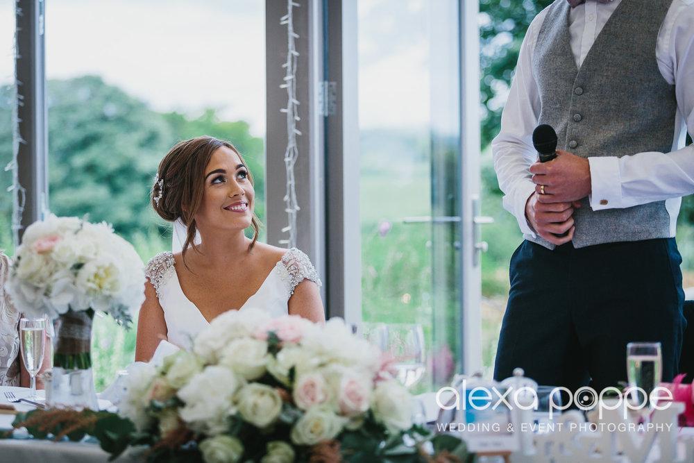 NH_wedding_Trevenna_cornwall-77.jpg