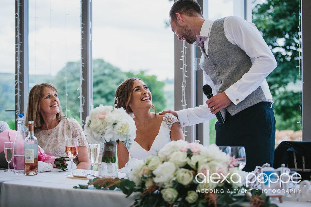 NH_wedding_Trevenna_cornwall-76.jpg