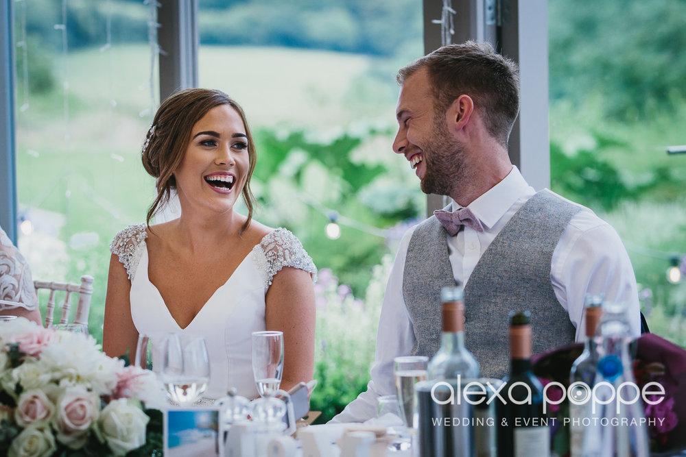 NH_wedding_Trevenna_cornwall-80.jpg