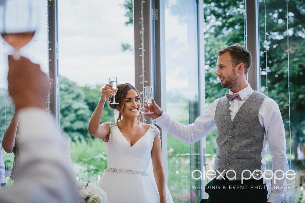NH_wedding_Trevenna_cornwall-81.jpg