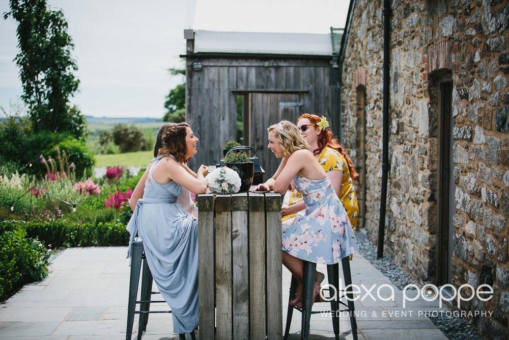 NH_wedding_Trevenna_cornwall-82.jpg