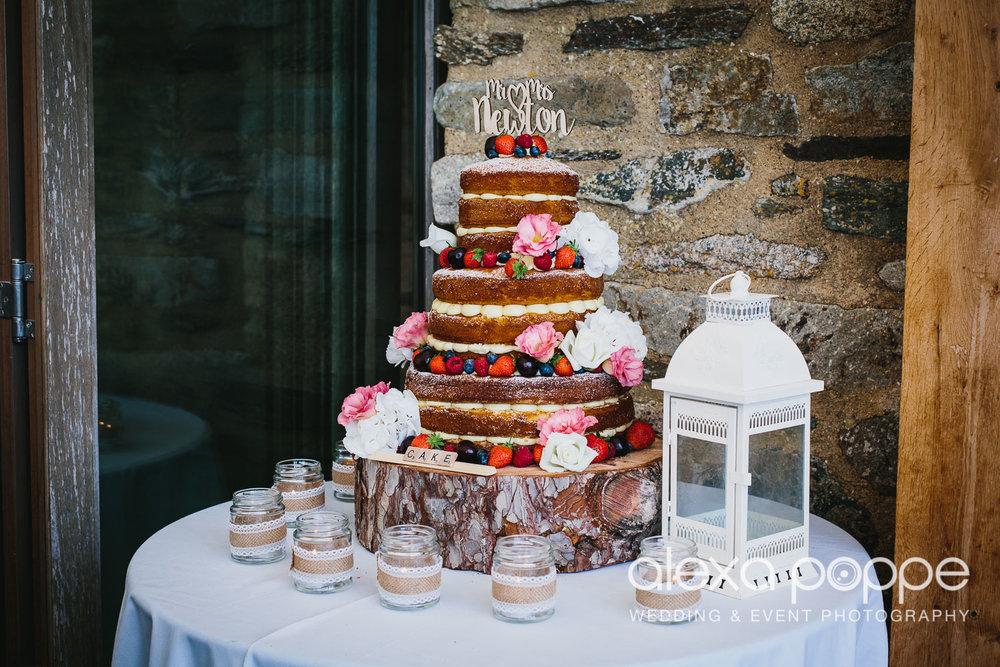 NH_wedding_Trevenna_cornwall-100.jpg
