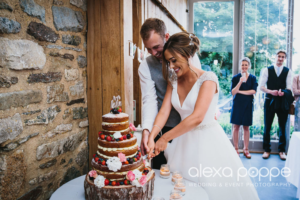 NH_wedding_Trevenna_cornwall-103.jpg