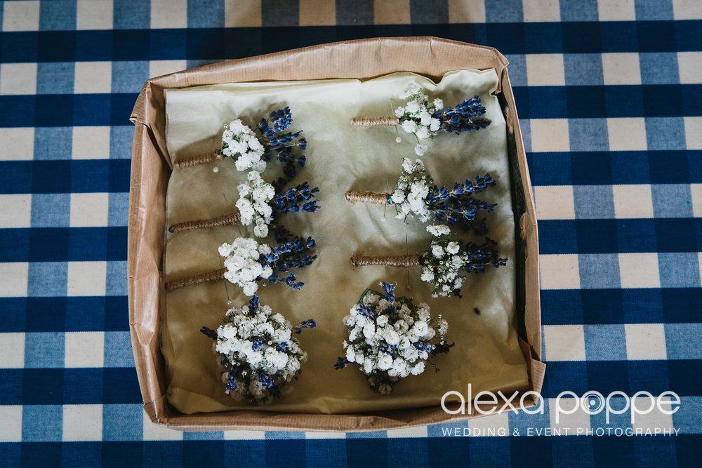 HF_wedding_cornwall-11.jpg