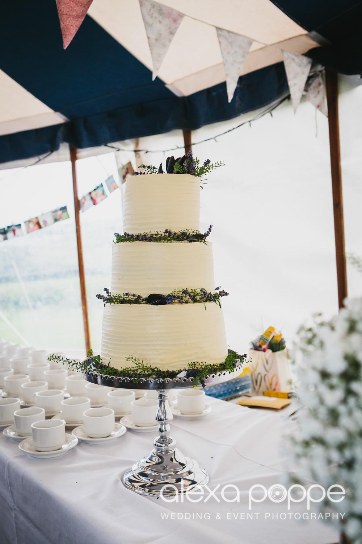 HF_wedding_cornwall-90.jpg