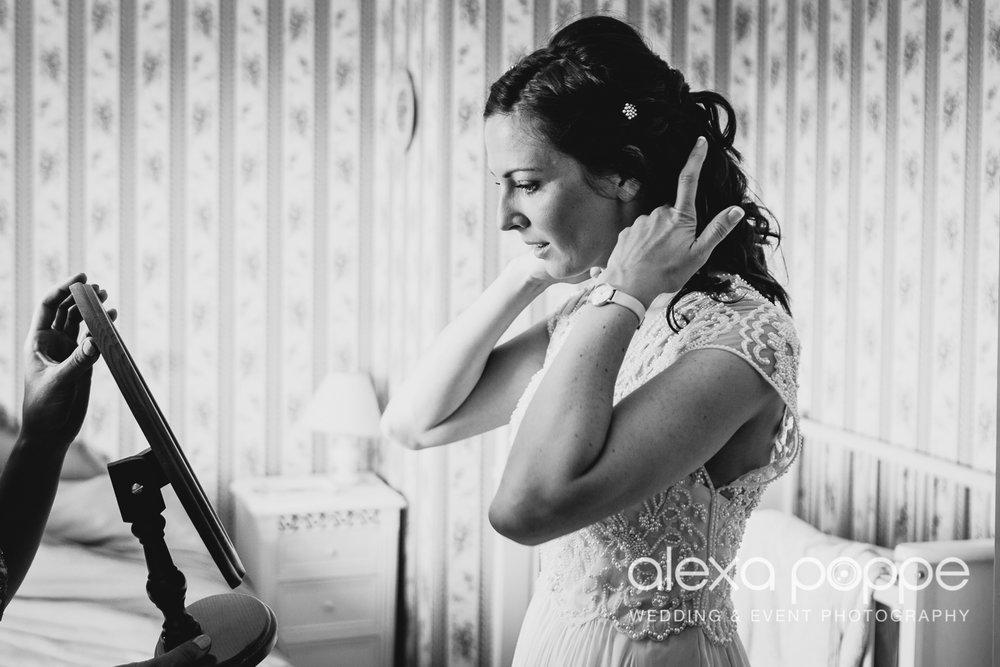 ST_wedding_rockbearemanor_wm_6.jpg