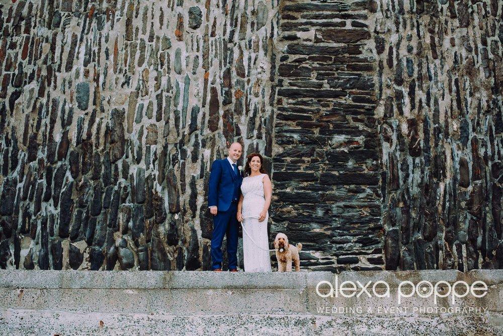 LJ_wedding_tresanton_weddingdog_1.jpg