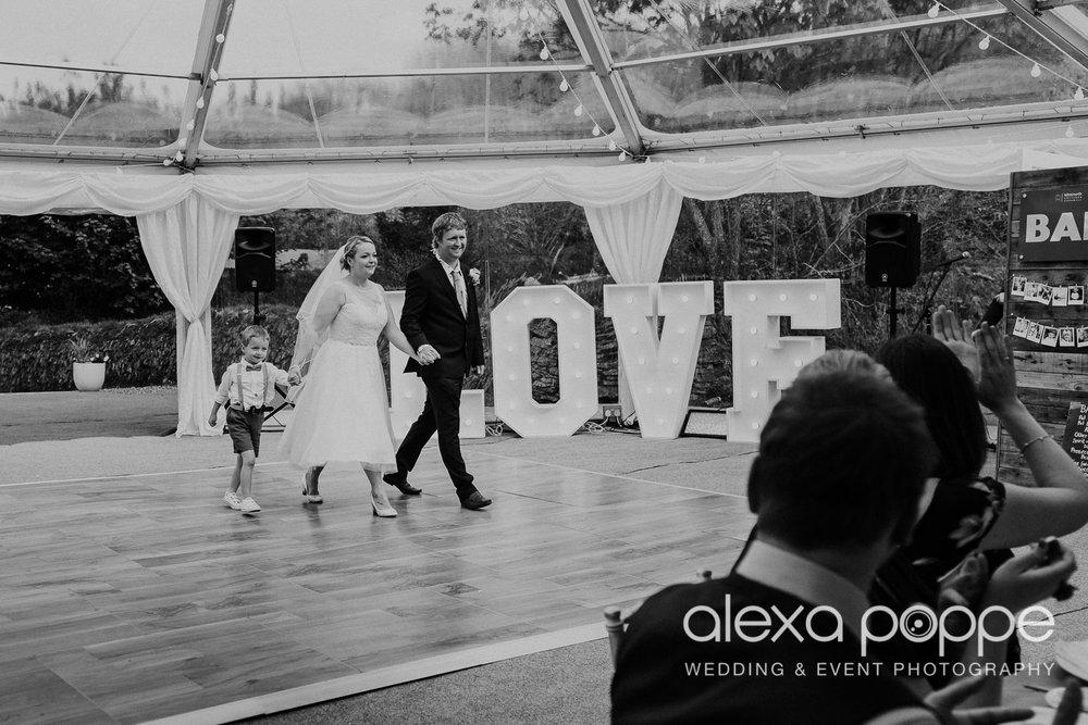 RW_wedding_kilminorthcottages_43.jpg