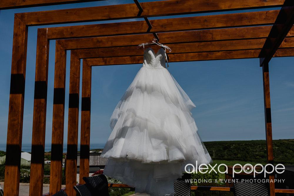 FE_wedding_gwelabmor_portreath_1.jpg