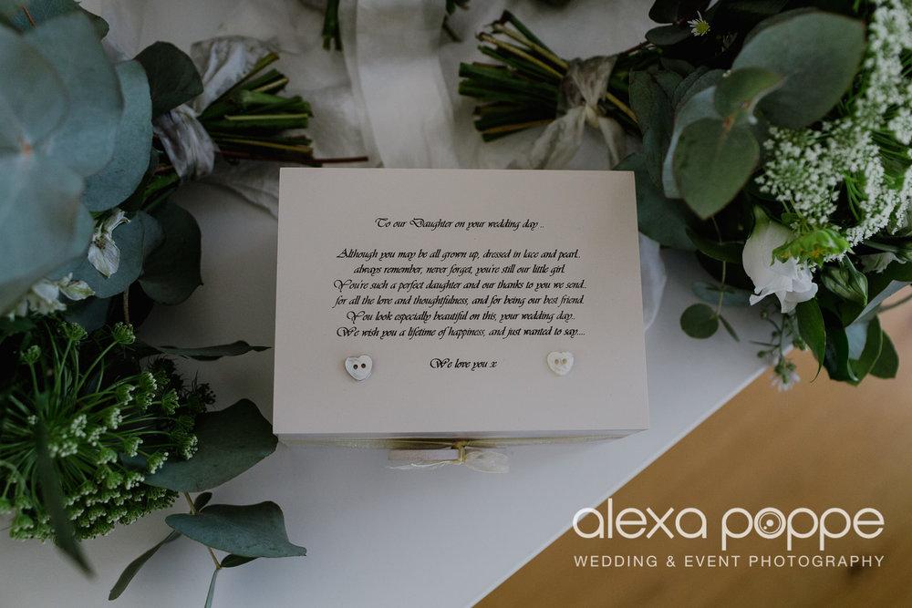 FE_wedding_gwelabmor_portreath_3.jpg