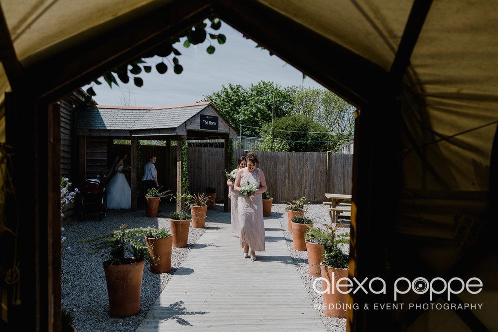 FE_wedding_gwelabmor_portreath_17.jpg
