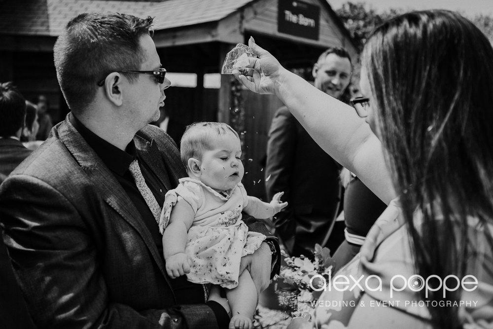 FE_wedding_gwelabmor_portreath_31.jpg