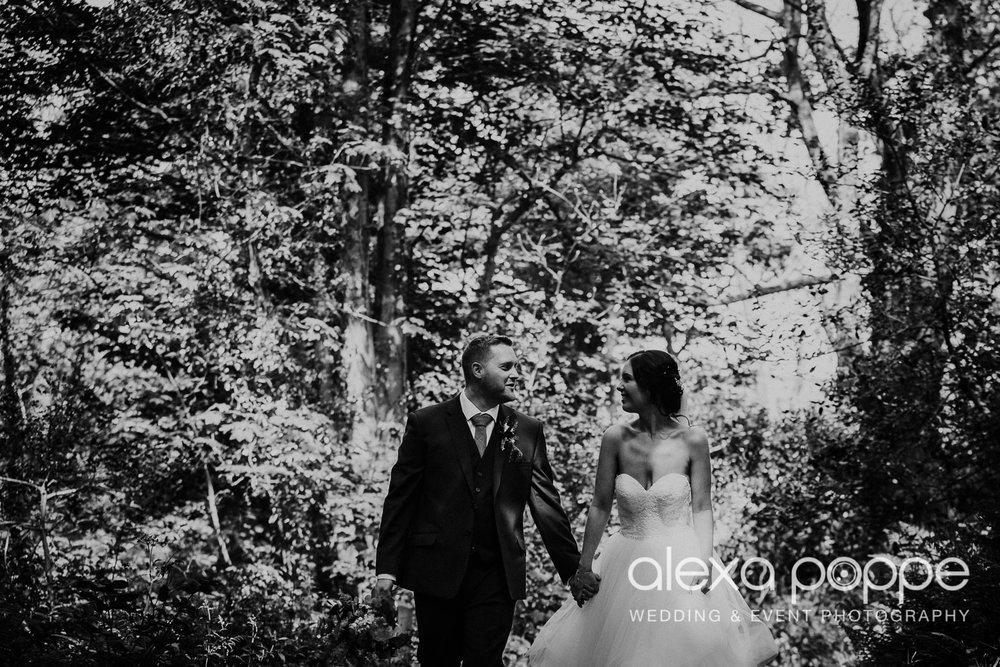 FE_wedding_gwelabmor_portreath_37.jpg