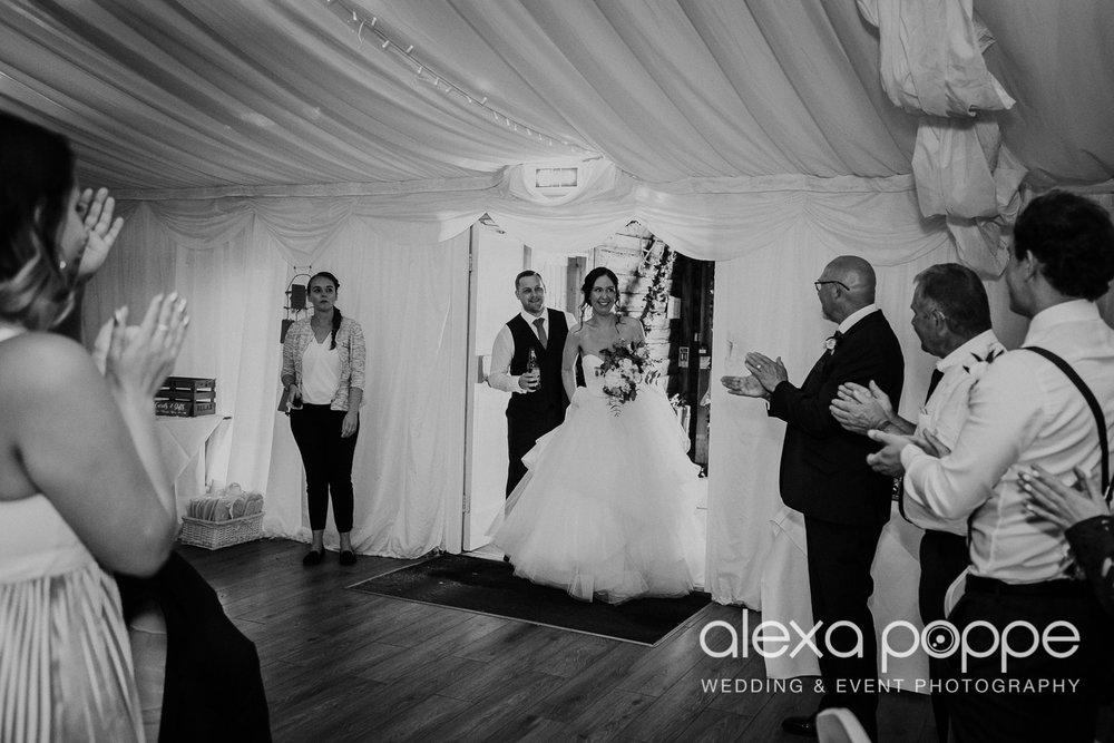 FE_wedding_gwelabmor_portreath_50.jpg