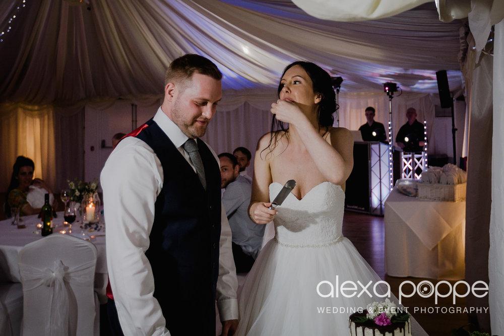 FE_wedding_gwelabmor_portreath_82.jpg