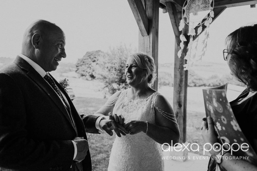 DR_wedding_trevenna_32.jpg