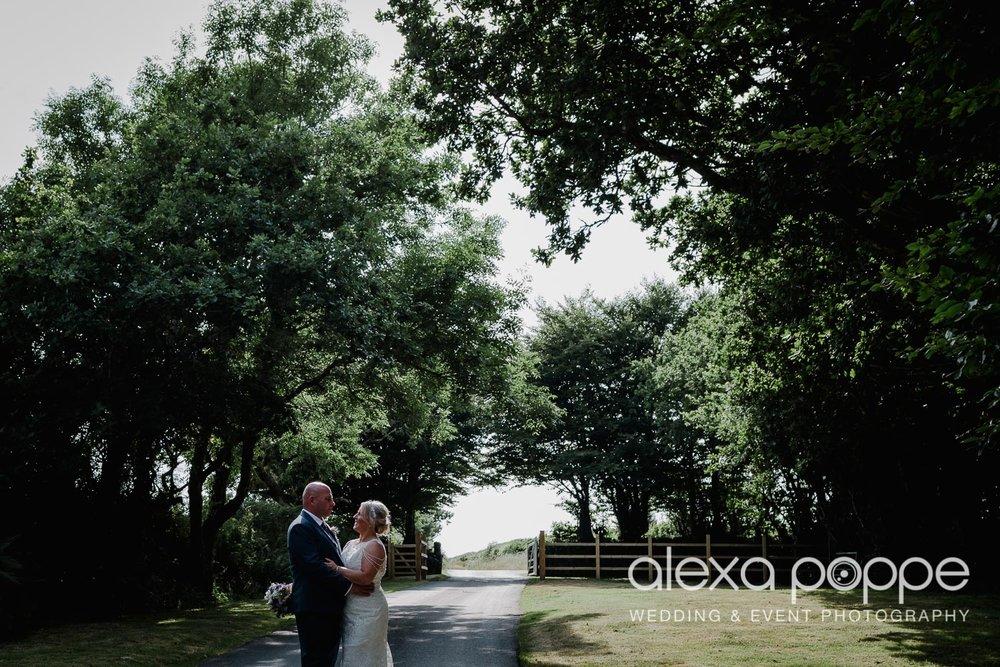 DR_wedding_trevenna_41.jpg