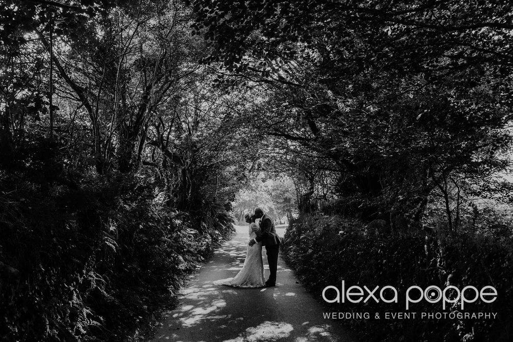 DR_wedding_trevenna_48.jpg