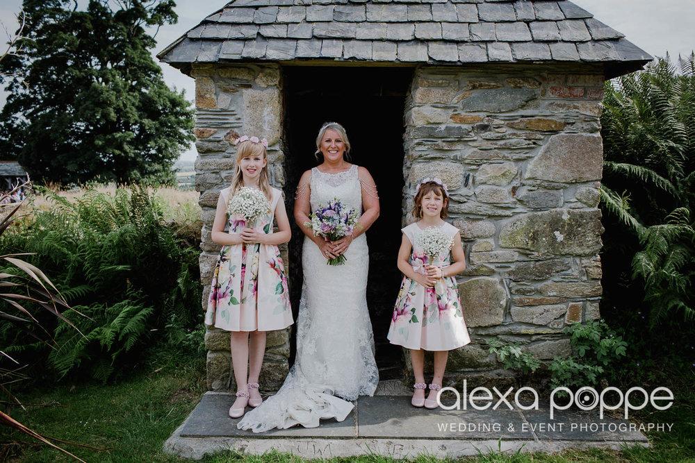 DR_wedding_trevenna_49.jpg