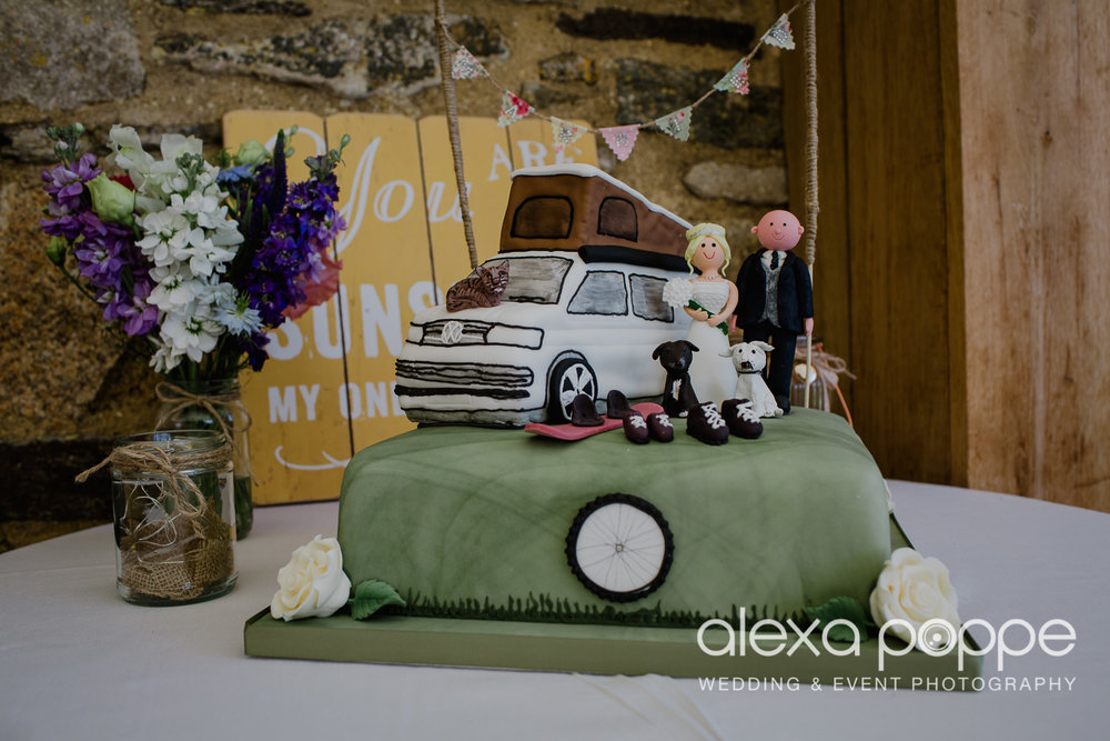 DR_wedding_trevenna_80.jpg
