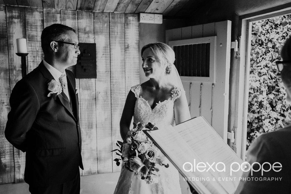 AH_wedding_lowerbarns_26.jpg