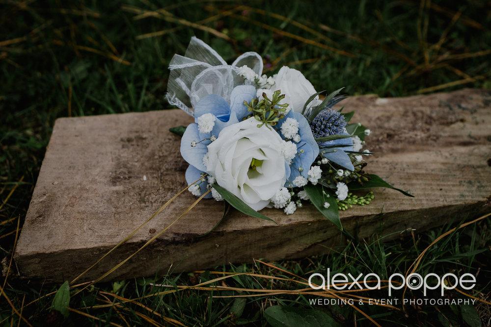 ER_wedding_lustyglaze_cornwall_3.jpg