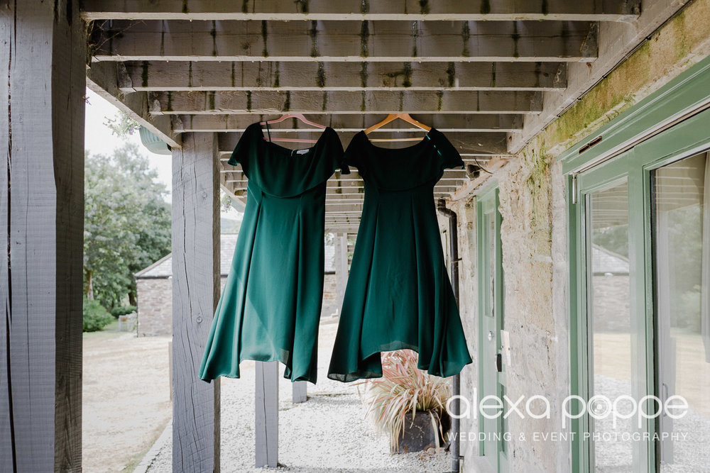 BM_wedding_thegreen_cornwall_13.jpg