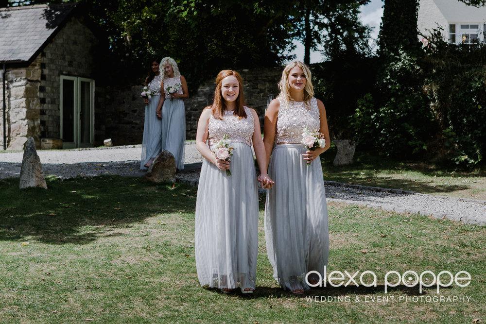 JA_outdoor_wedding_thegreen_cornwall_20.jpg