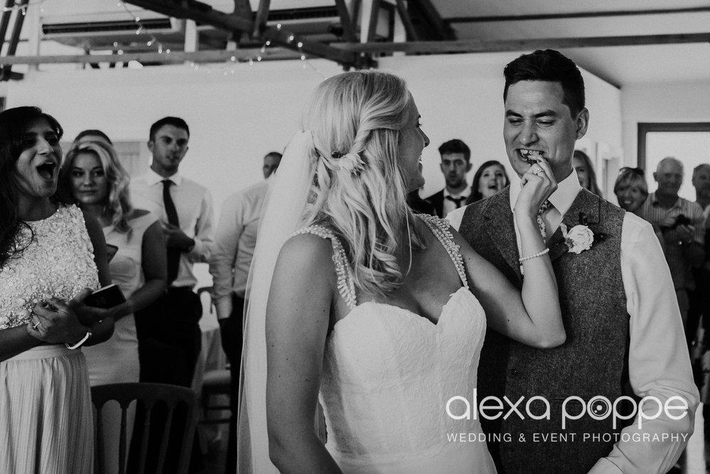 JA_outdoor_wedding_thegreen_cornwall_77.jpg