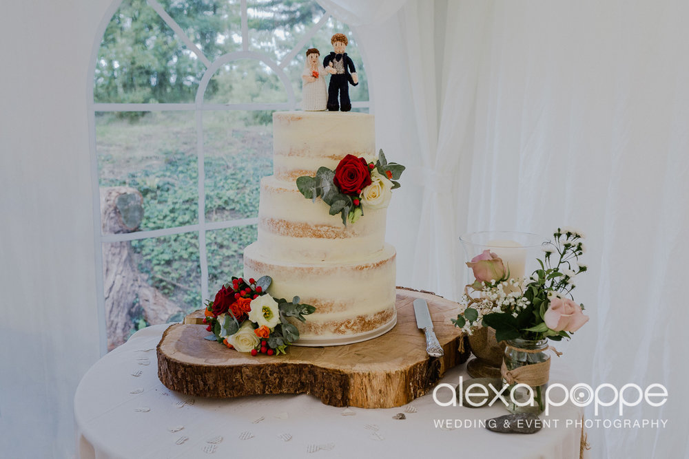CB_wedding_morwenstow_cornwall_36.jpg