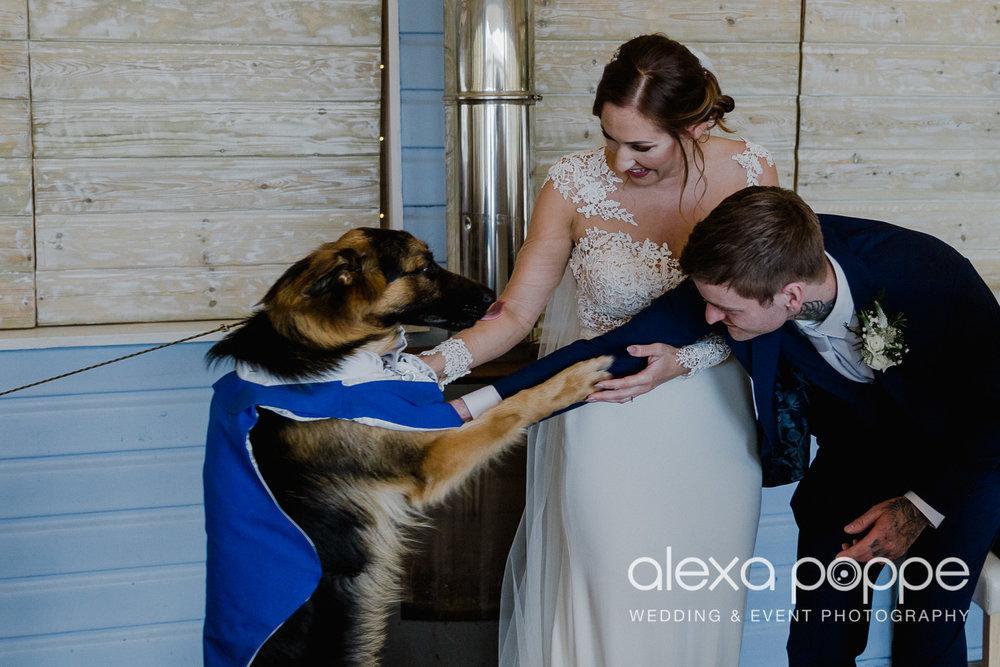 BA_wedding_lustyglaze_35.jpg