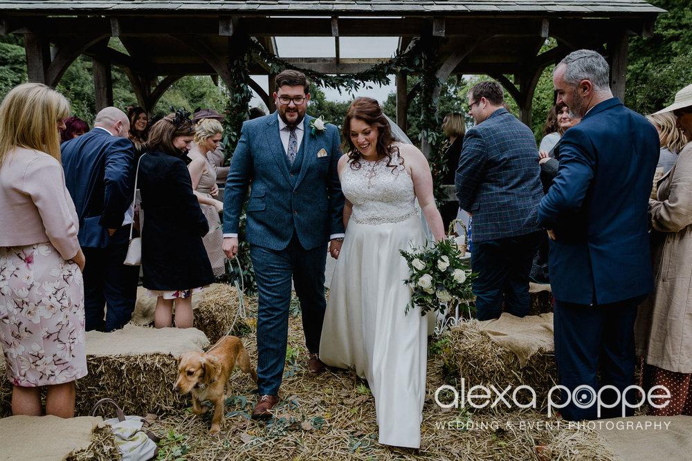 AM_wedding_knightorwinery_cornwall_18.jpg