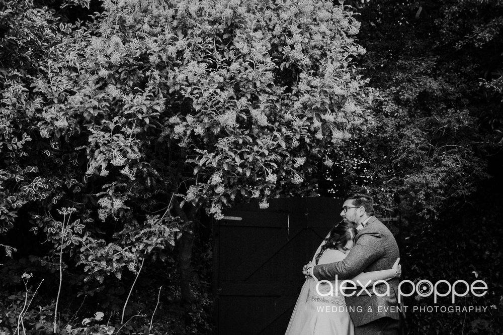 AM_wedding_knightorwinery_cornwall_29.jpg