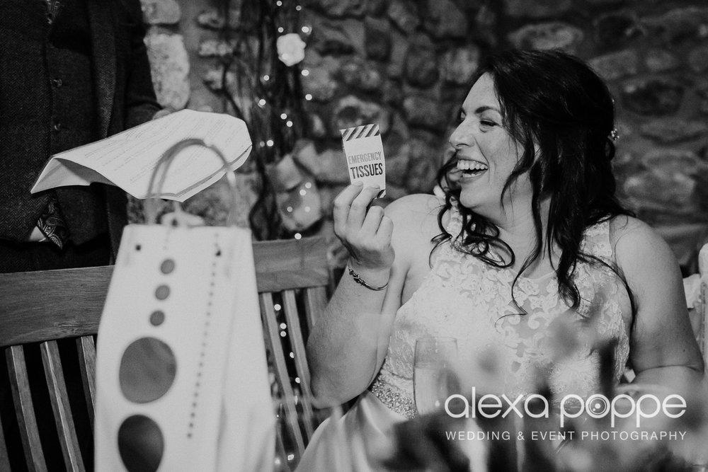 AM_wedding_knightorwinery_cornwall_46.jpg