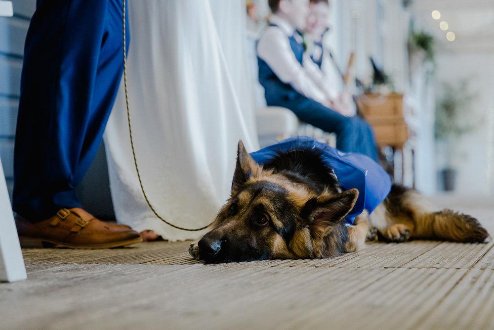 BA_wedding_lustyglaze_cornwall_36.jpg