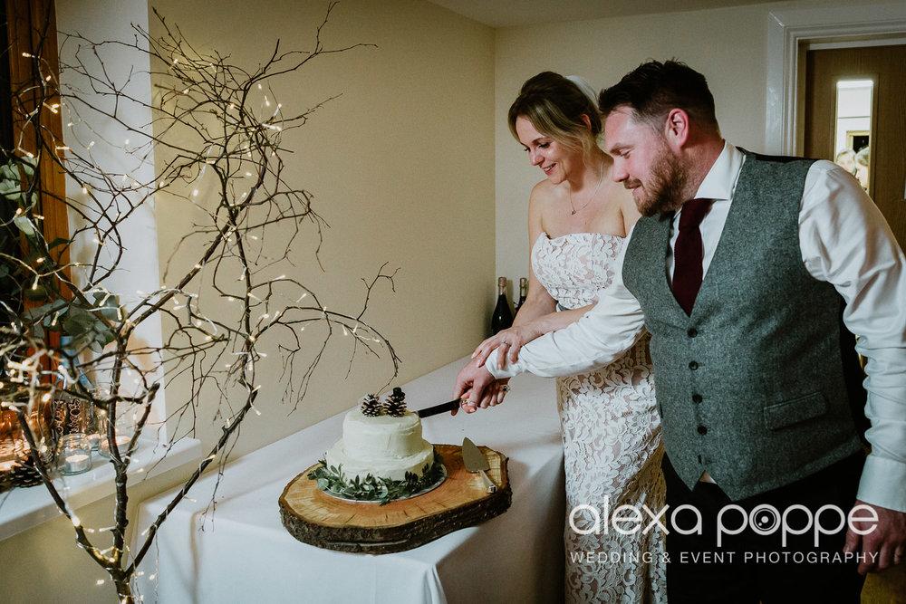 EL_wedding_tredudwellmanor_82.jpg