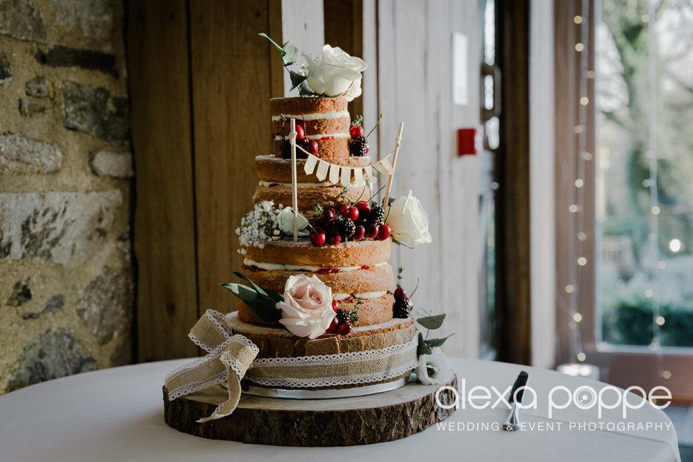 HT_wedding_trevenna_65.jpg