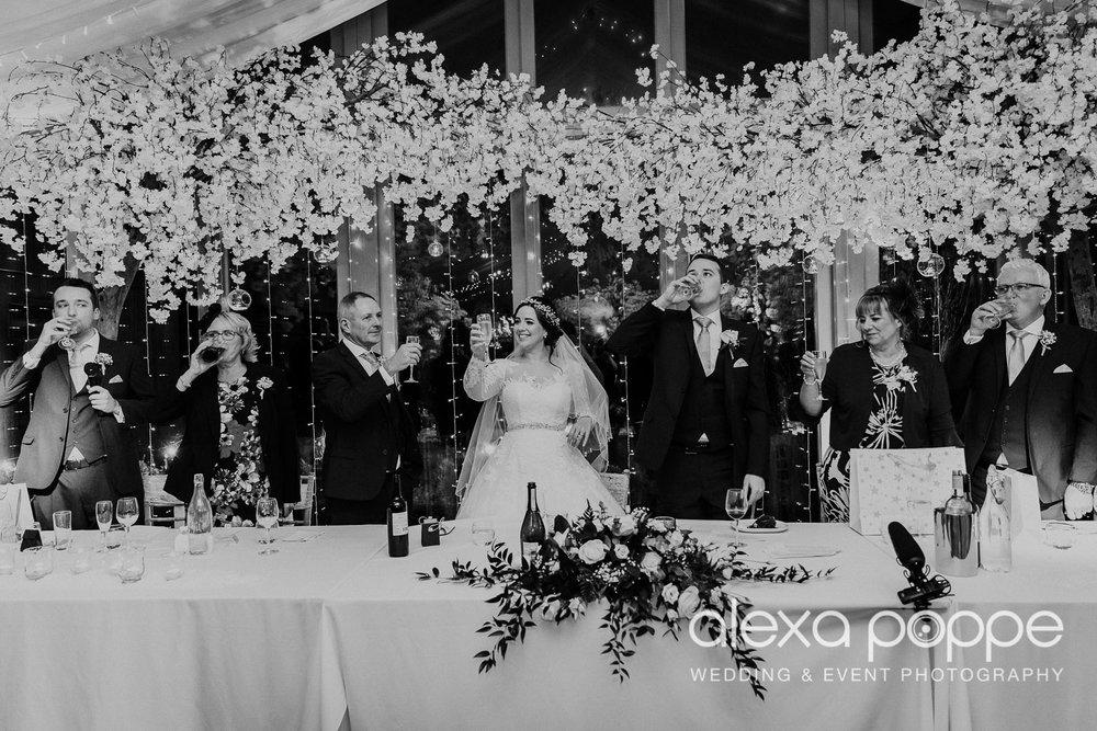 HT_wedding_trevenna_73.jpg