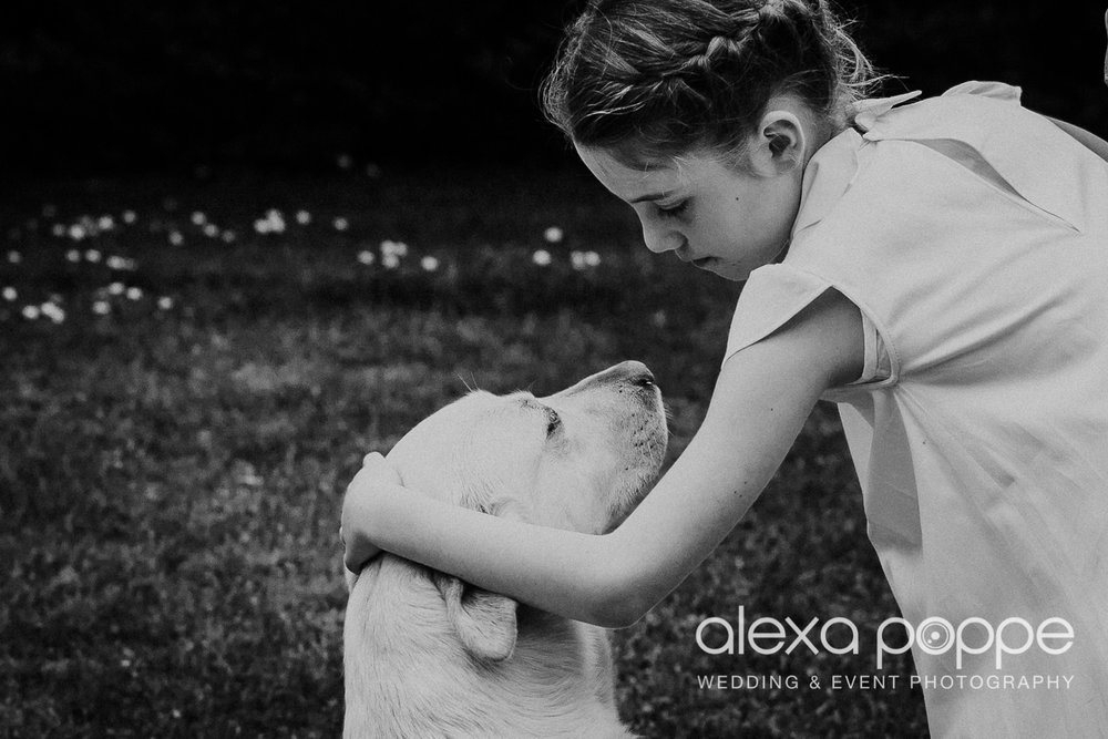 A tender moment flowergirl and wedding dog, just adorable…