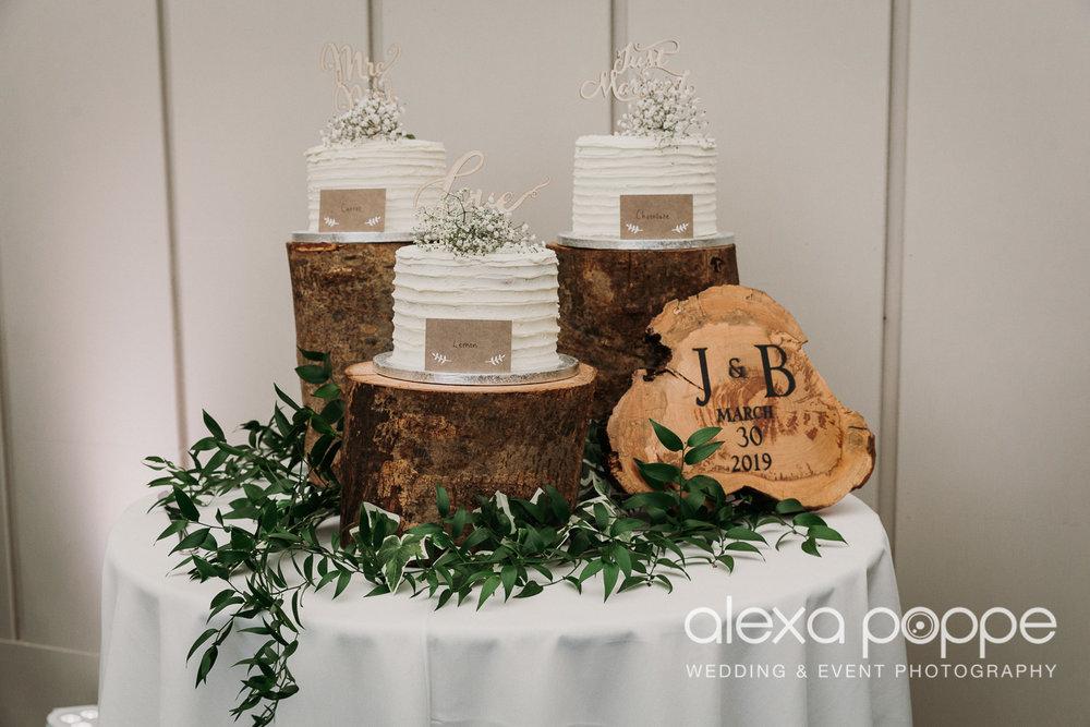 BJ_wedding_trevenna-56.jpg
