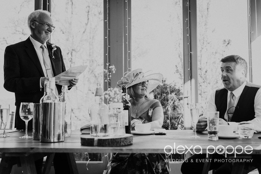 BJ_wedding_trevenna-65.jpg