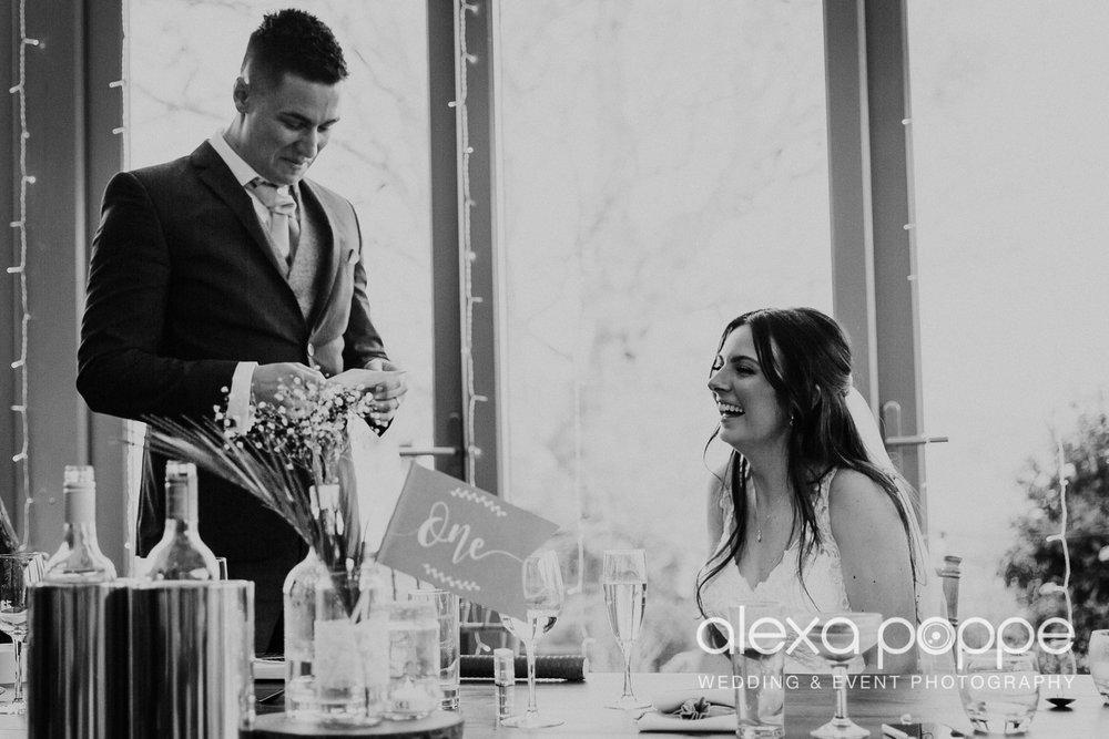 BJ_wedding_trevenna-73.jpg