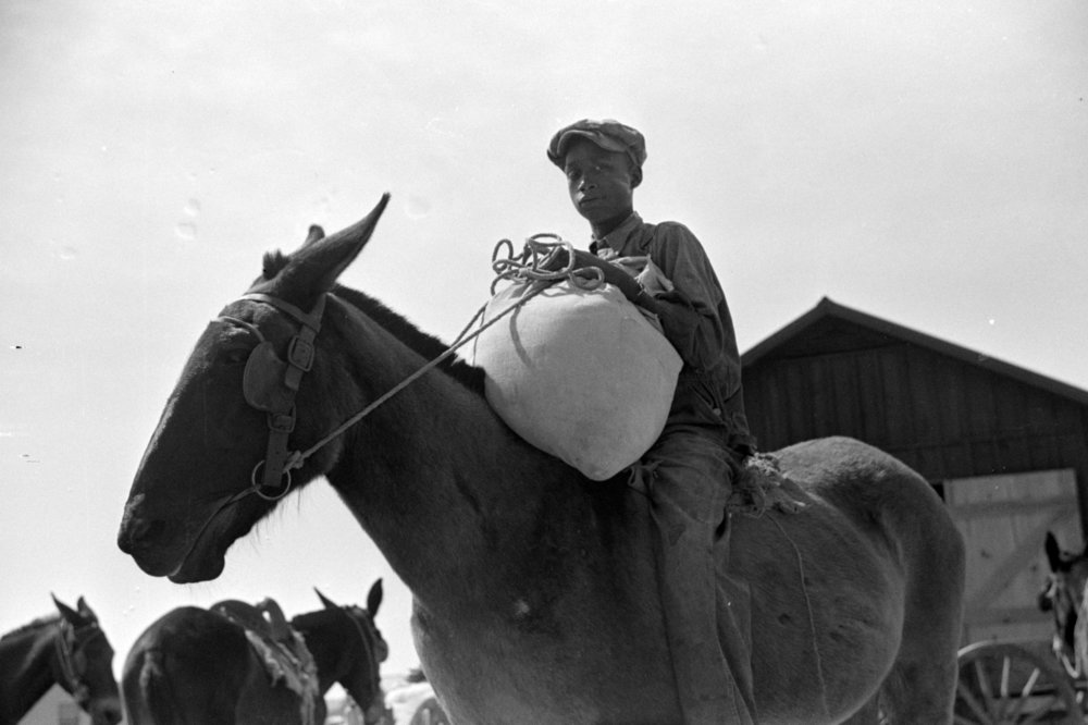 Bringing home ground corn meal, 1939, Courtesy of Library of Congres