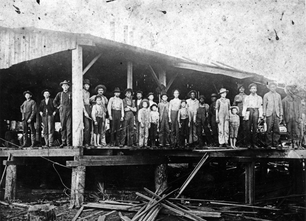 Sawmill in Pasco County, Florida, circa 1900, Courtesy of State Archives of Florida,  Florida Memory