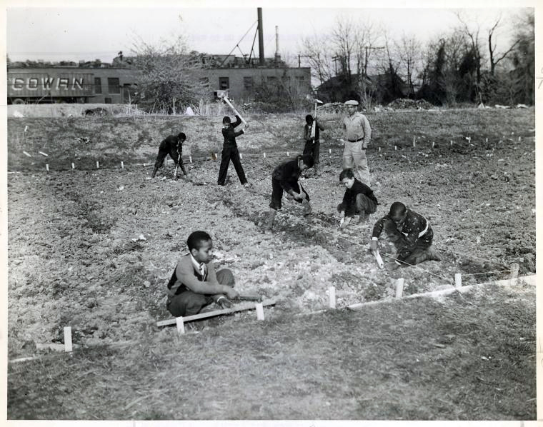 Washington, DC Public School children preparing the soil for their community Victory Garden under supervision of one of their teachers, 1943, Courtesy of Library of Congress