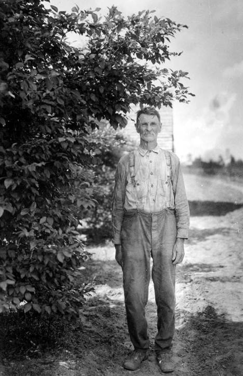 1924 Blueberry Patch, Courtesy of State Archives of Florida, Florida Memory Project