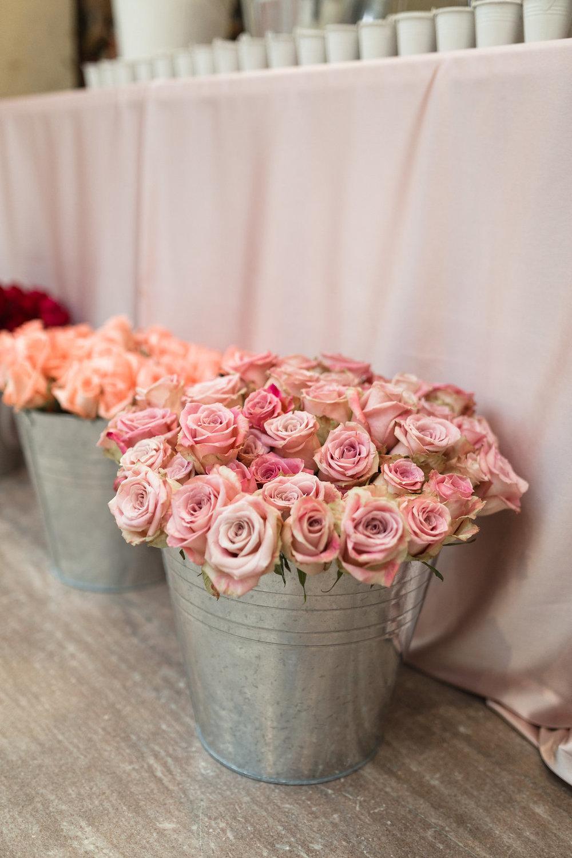 blossom-38.jpg