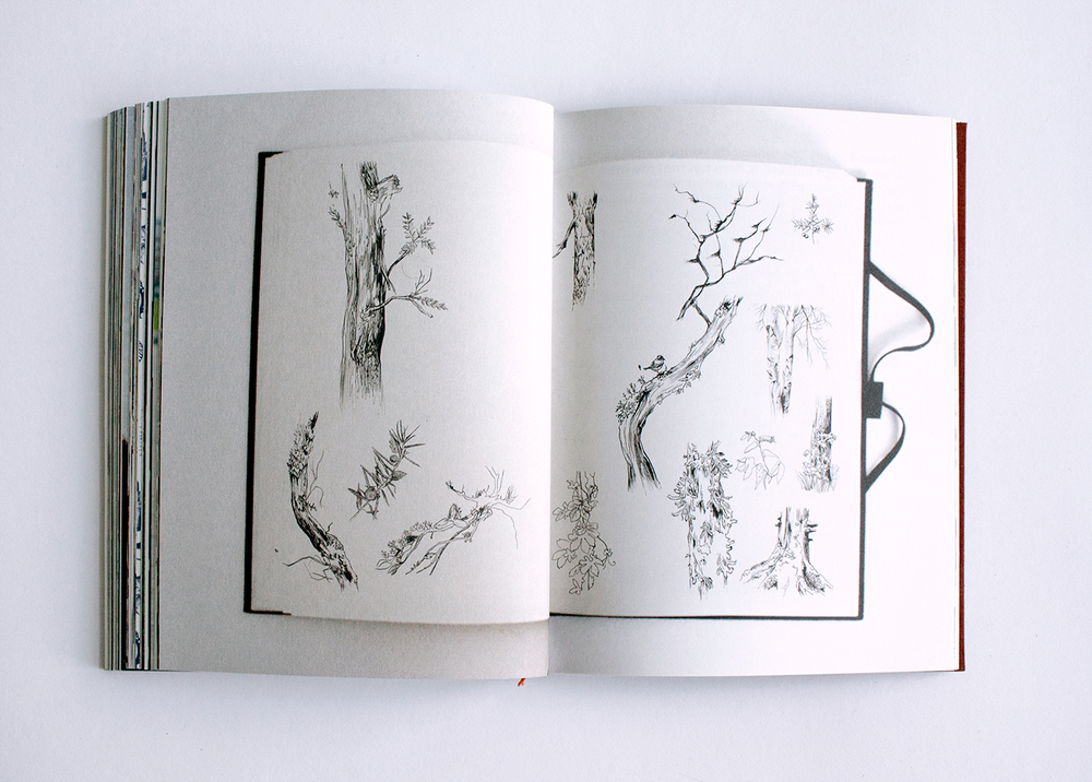 fig. 2. The trees you see, my sketchbook of different trees and branches found in the woods and the Hortus Botanicus