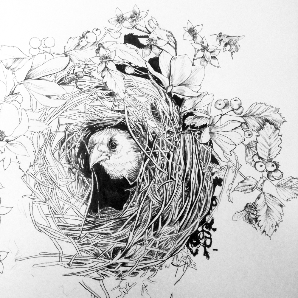 fig. 3. Process, ink and ballpoint