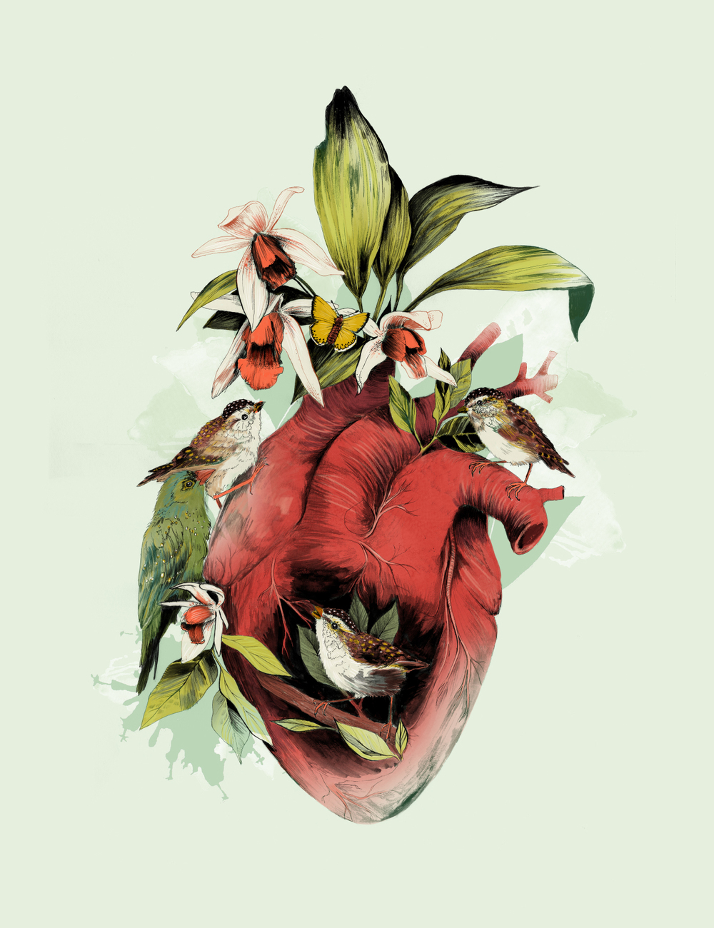 fig. 1. Heart Of Birds, anatomical heart with orchids and birds